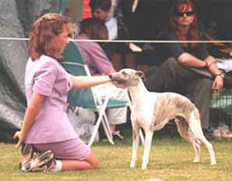 Jess around 14 years old, showing her Whippet, Ryan