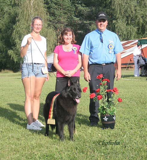 Best Belgian Shepherd in Show & BIS 3